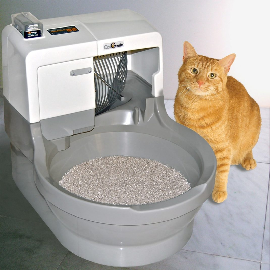 Orange cat sitting with a CatGenie self-flushing, self-washing litter box.
