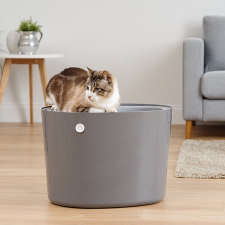 IRIS Top Entry Cat Litter Box with a cat sitting on top of it