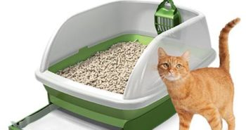 Purina Tidy Cats Breeze Litter Box System with a cat next to it